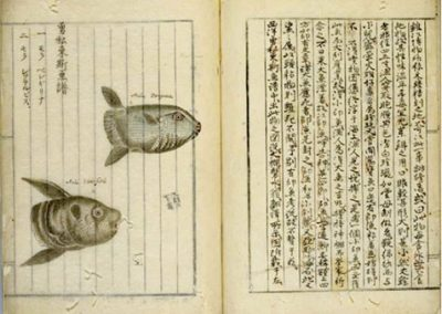 From the National Diet Library of Japan