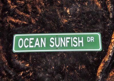 Ocean Sunfish Drive sign